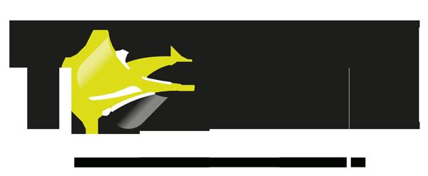 logo300_TOTEM
